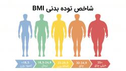 فرمول و محاسبه شاخص حجم بدن bmi